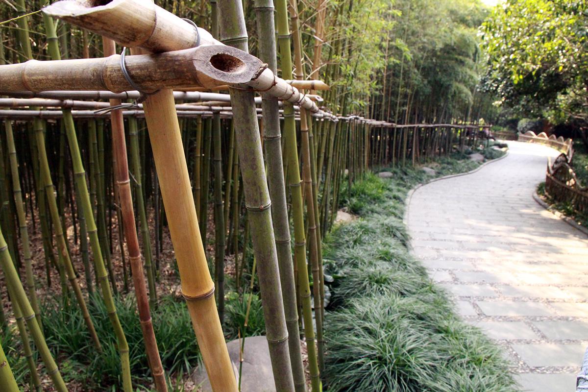 shanghai-parks-3