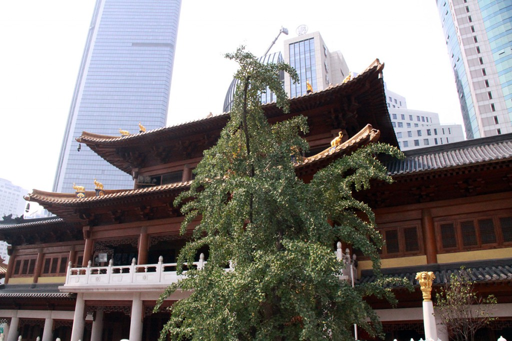 shanghai-temples-2