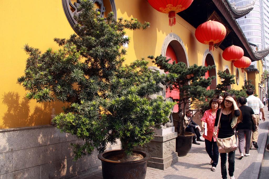 shanghai-temples-8